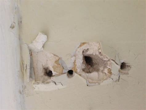 RE-hanging curtains on plaster wall - DoItYourself